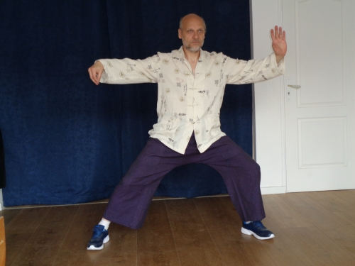 arts martiaux,thomas dufresne,taiji quan,tai chi